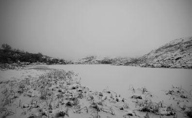 Winter snow monochrome