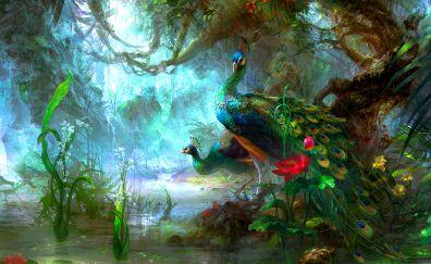 Peacock colorful birds artwork