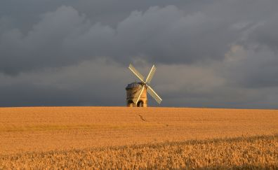 Windmill, wheat field, agriculture