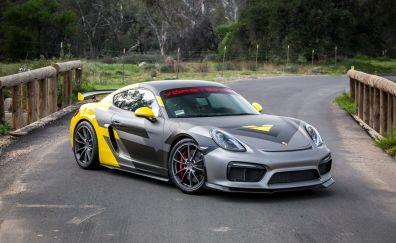 Porsche cayman gt4 sports car