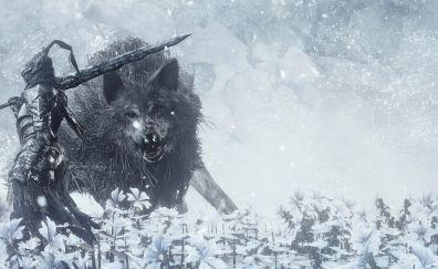 Dark souls III, wolf, warrior, flowers