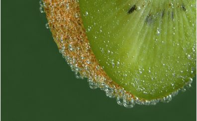 Kiwifruit, green fruits, slice