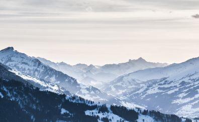 Beatenberg mountain, nature