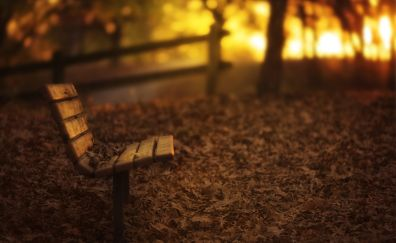 Bench of garden in fall