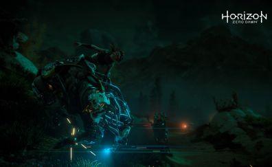 Horizon Zero Dawn video game, aloy, night