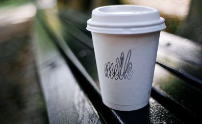 Milk cup, bench, blur