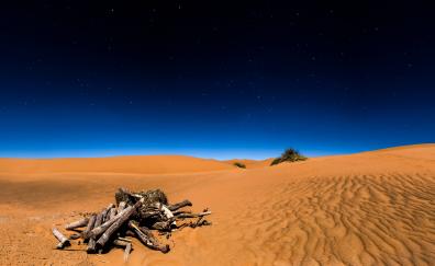 Desert, night, landscape
