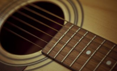 Strings of guitar close up