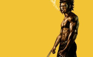 Wolverine, logan, artwork