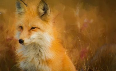 Fox, painting, artwork