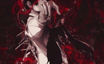 Zankyou no Terror, Terror in Resonance, anime boy
