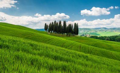 Italy tuscany hills grass field