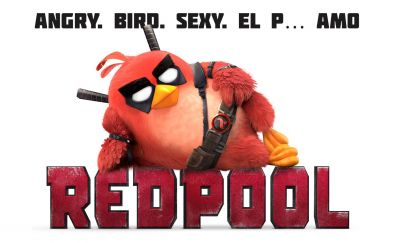 Redpool angry birds funny