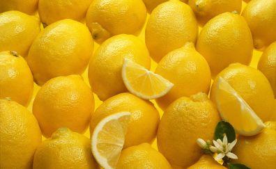 Lemon fruits, slices