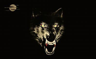Wolf muzzle, art, animal