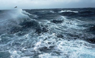 Rough seas in the southern ocean