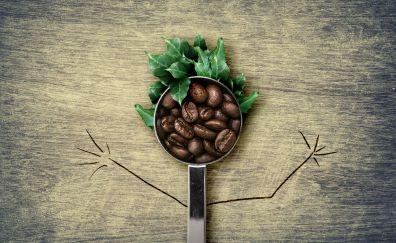 Coffee beans, spoon, leaves