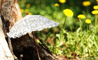 White umbrella, grass, plants, garden
