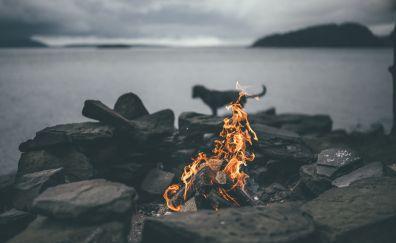 Bonfires wallpaper