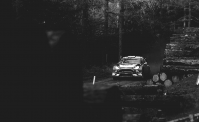 Ford Fiesta car