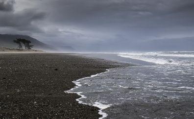 New Zealand's coast beach