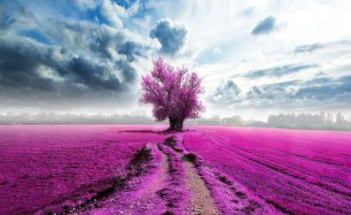 Tree, pink, clouds, horizon, artwork, landscape