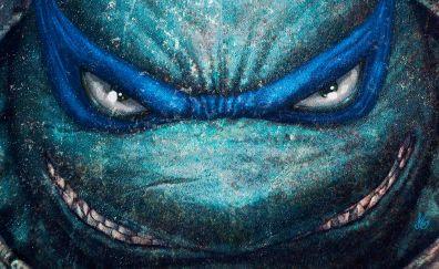 Teenage Mutant Ninja Turtle angry face