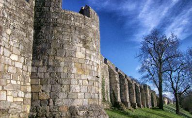 City walls, tree, wall