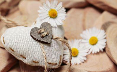 Daisy, heart, love, flowers