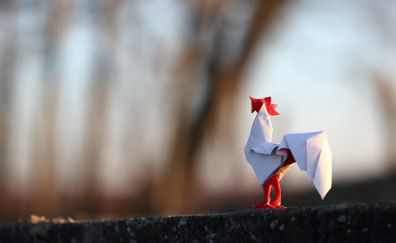 Paper white hen
