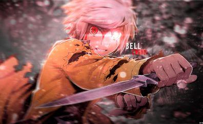 Bell Cranel, DanMachi, anime