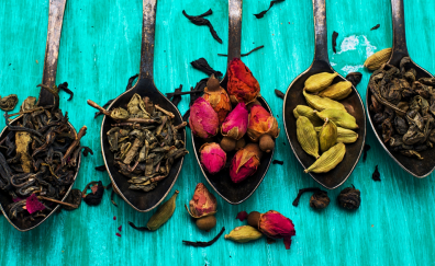 Colorful spices in spoons