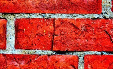 Bricks wall close up