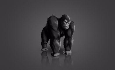 Minimalism gorilla monkey