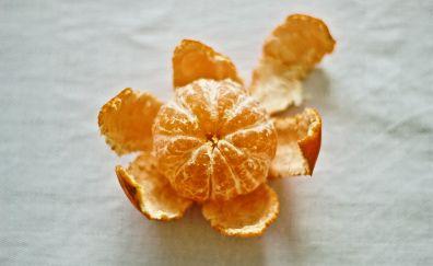 Tangerine, citrus, fruit, 5k