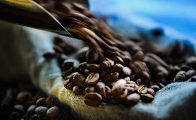Beans, coffee beans, close up