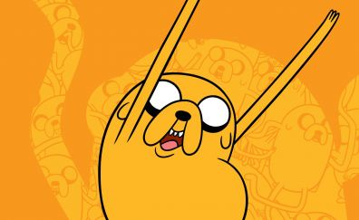 Jake the Dog of Adventure Time cartoon