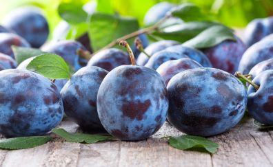 Plums fruits close up