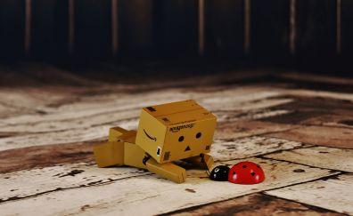 Danbo play with ladybug