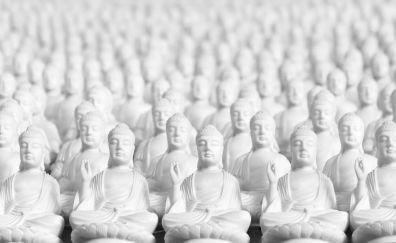 Buddha, white statues