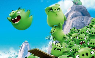 Bad piggies, angry birds, movie, pigs