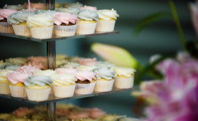 Cupcake, cake, baking