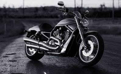 Harley Davidson motorcycle, monochrome