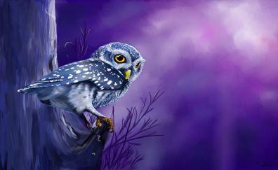 Owl bird, night, watch, art