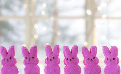 Bunny peeps, pink, food